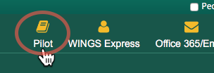 Log in from wings.